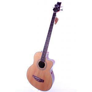 Strauss Rottman ozvučeni akustični bas LHBS288E-49