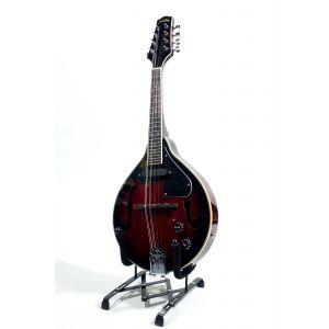 Strauss Rottman ozvučena mandolina LM-5