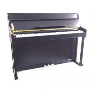Strauss Rottman Digital Pianino