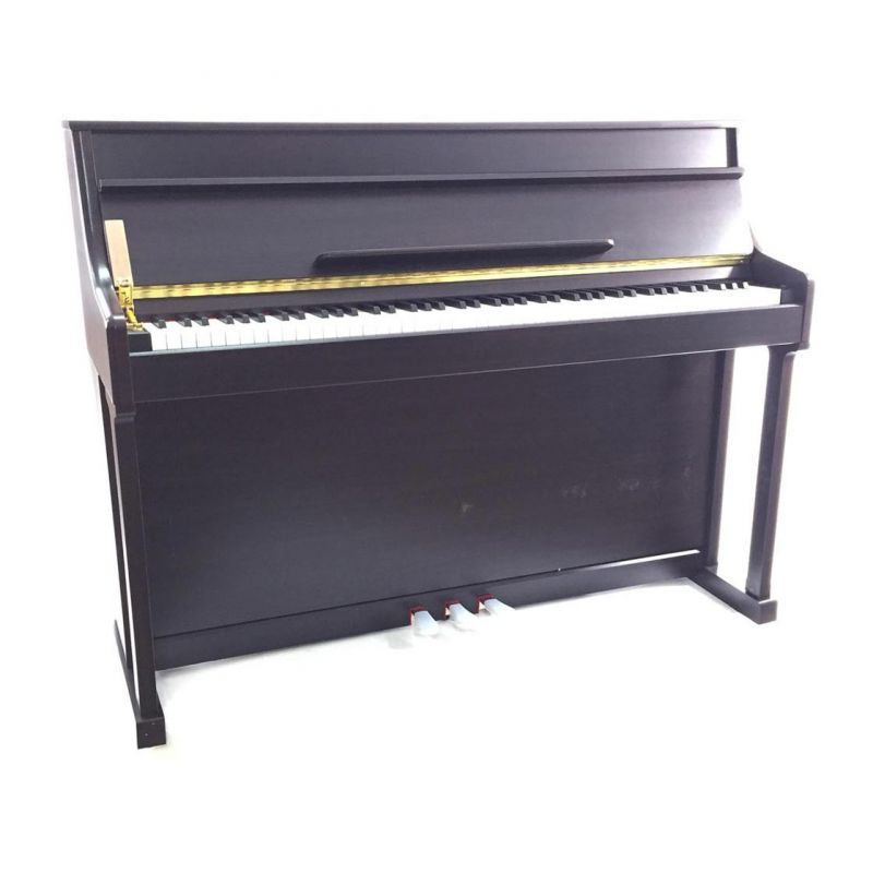 Strauss Rottman Digital Pianino